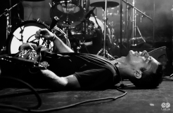 Photo of The So So Glos by CeeCee Hood Photography